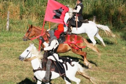 Salva Terra - chevaliers